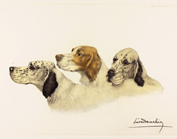 Engraving, Hand coloured restrike engraving, Three Setters Medium image. Click to enlarge
