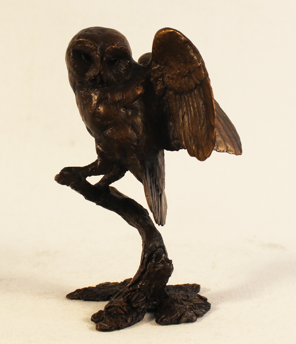 Michael Simpson, Bronze, Tawny Owl Click to enlarge
