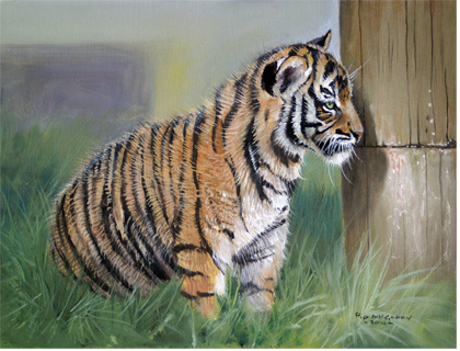 how to buy a tiger cub in uk