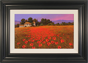 Steve Thoms, Original oil painting on panel, Field of Tuscan Poppies
