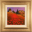 Steve Thoms, Original oil painting on panel, Tuscan Poppies