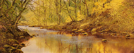 Terry Evans, Original oil painting on canvas, River Derwent No frame image. Click to enlarge