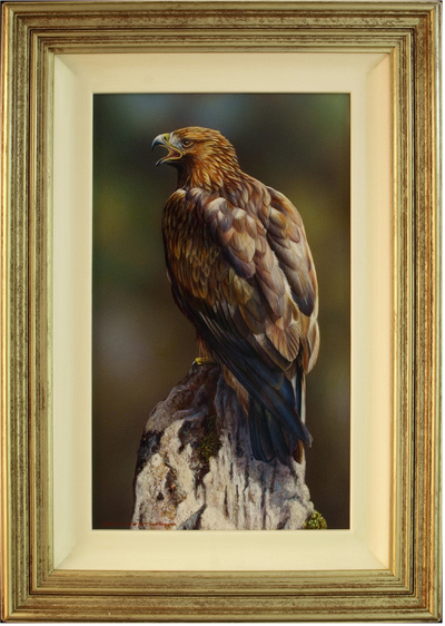 Wayne Westwood, Original oil painting on panel, Golden Eagle