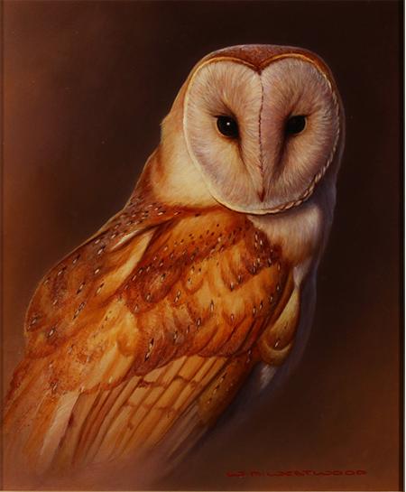 Wayne Westwood, Original oil painting on panel, Owl No frame image. Click to enlarge