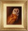 Wayne Westwood, Original oil painting on panel, Owl Medium image. Click to enlarge