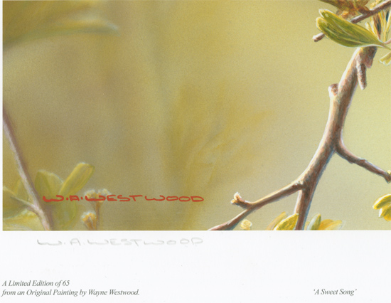 Wayne Westwood, Signed limited edition print, A Sweet Song Signature image. Click to enlarge