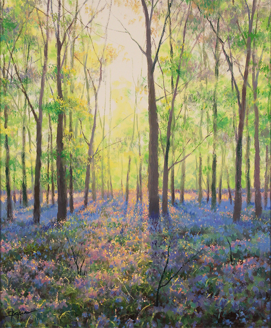Alan Barker, Original oil painting on canvas, The Bluebell Wood