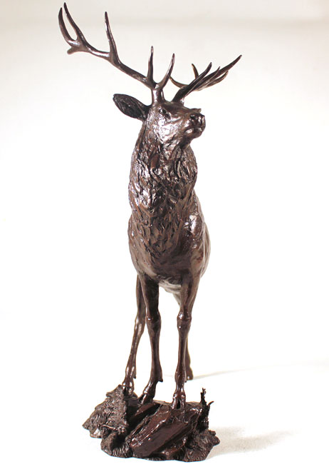 Michael Simpson, Bronze, Moorland Signature image. Click to enlarge