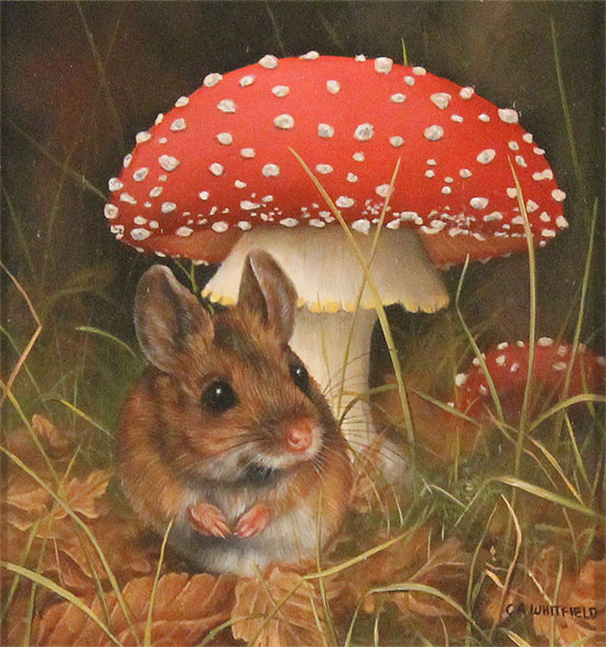 Carl Whitfield, Original oil painting on panel, Mouse and Toadstool