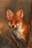 Carl Whitfield, Original oil painting on panel, Fox