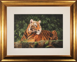 Wildlife Fine Art