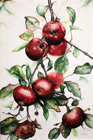 Jerry Walton, Watercolour, Blemished Reds