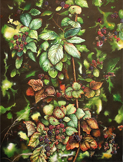 Jerry Walton, Watercolour, Bramble Tangle