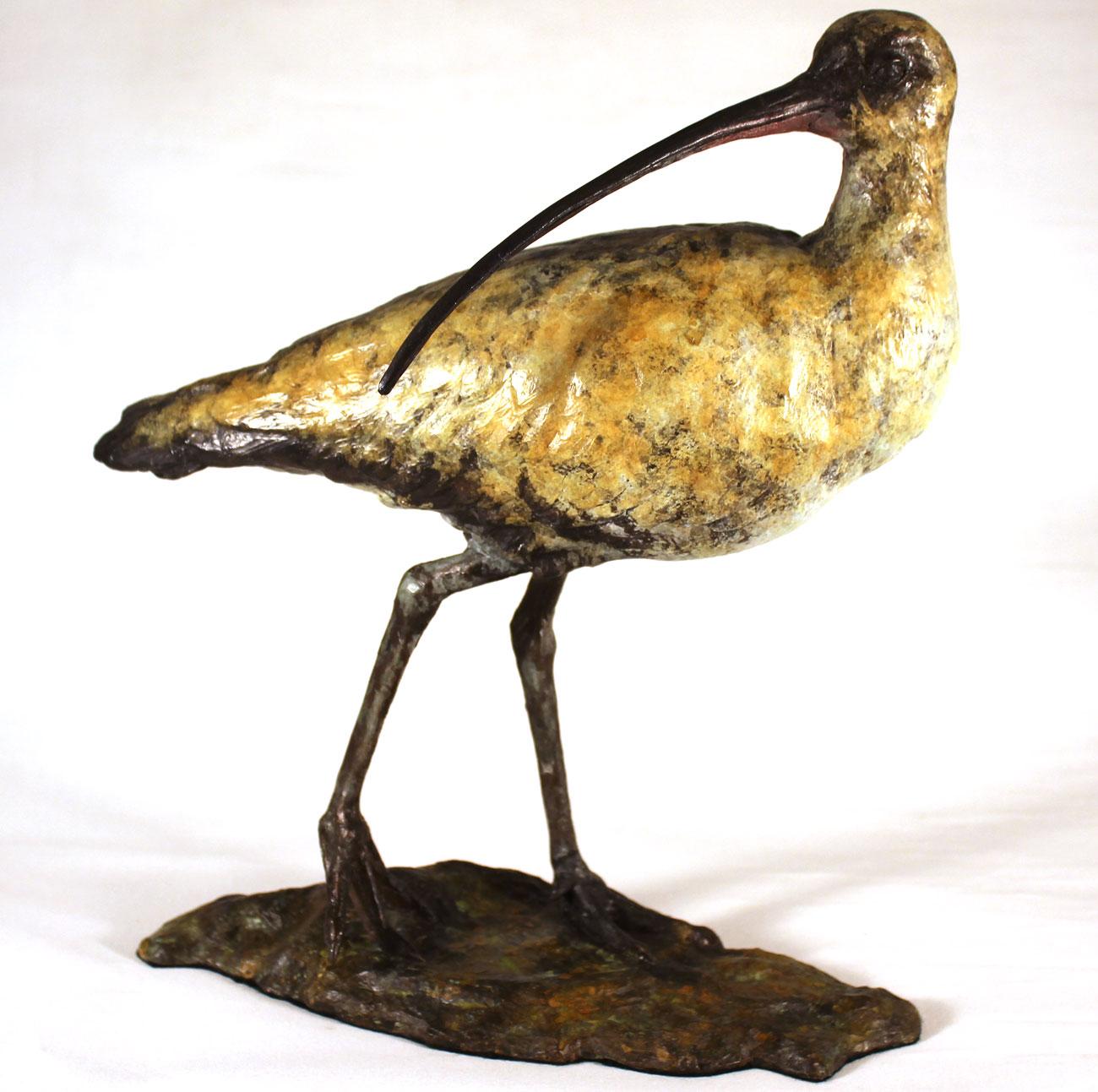 Joseph Hayton, Bronze, Curlew Click to enlarge