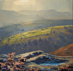 Julian Mason, Original oil painting on canvas, Grouse Pool, Derwent Edge