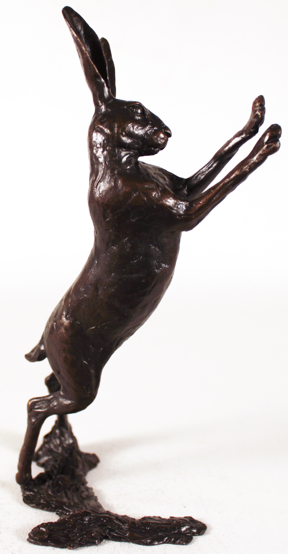 Michael Simpson, Bronze, Medium Hare Boxing Click to enlarge