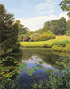 Michael James Smith, Original Oil Painting on Canvas , Lily Pond, Scotney Castle