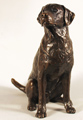 Michael Simpson, Bronze, Gun Dog