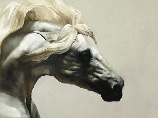 Natalie Stutely, Original oil painting on panel, Andalusian Stallion Signature image. Click to enlarge