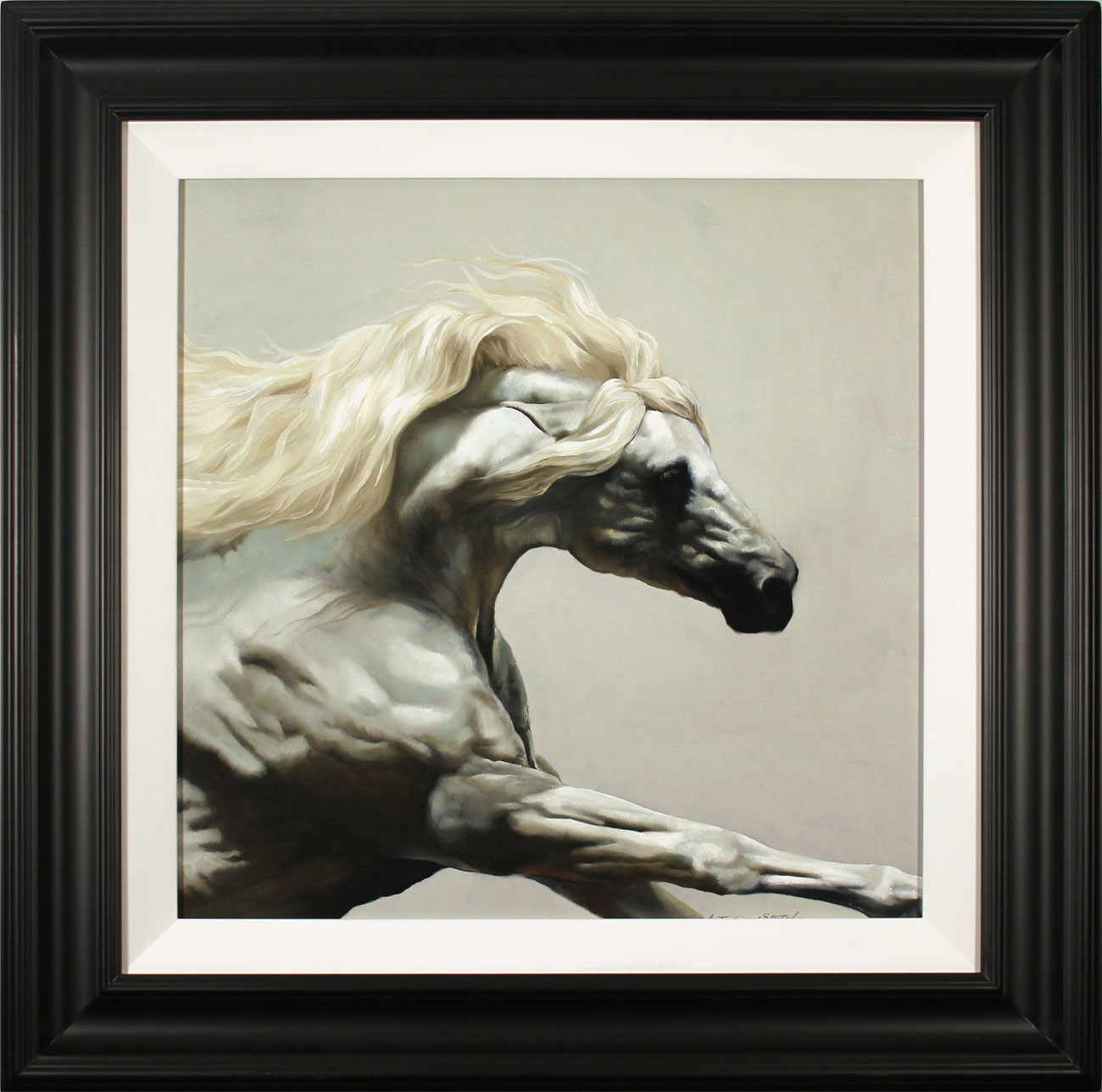 Natalie Stutely, Original oil painting on panel, Andalusian Stallion Click to enlarge