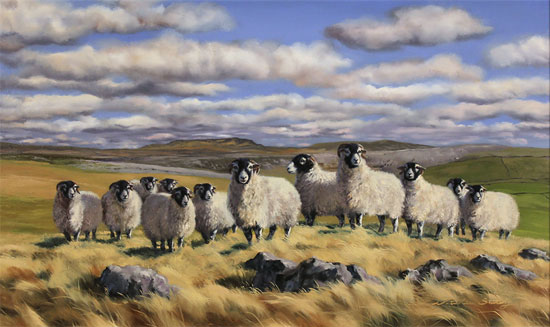 Natalie Stutely, Original oil painting on panel, Flock to Penyghent No frame image. Click to enlarge