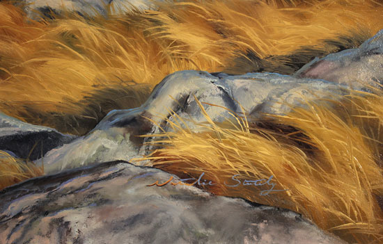 Natalie Stutely, Original oil painting on panel, Glen Etive, Rannoch Moor Signature image. Click to enlarge