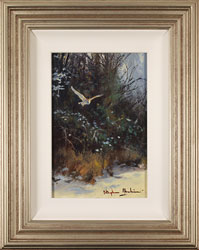 Stephen Hawkins, Original oil painting on panel, Barn Owl in Flight