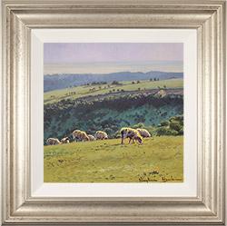 Stephen Hawkins, Original oil painting on panel, Summer Pasture, Swaledale Medium image. Click to enlarge
