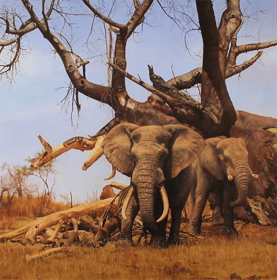 Stephen Park, Original oil painting on panel, African Elephants