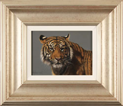 Stephen Park, Original oil painting on panel, Tiger