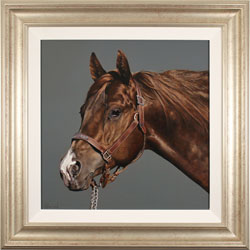 Stephen Park, Thoroughbred Stallion, Original oil painting on panel