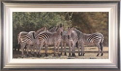 Stephen Park, Original oil painting on panel, Zebras of the Serengeti