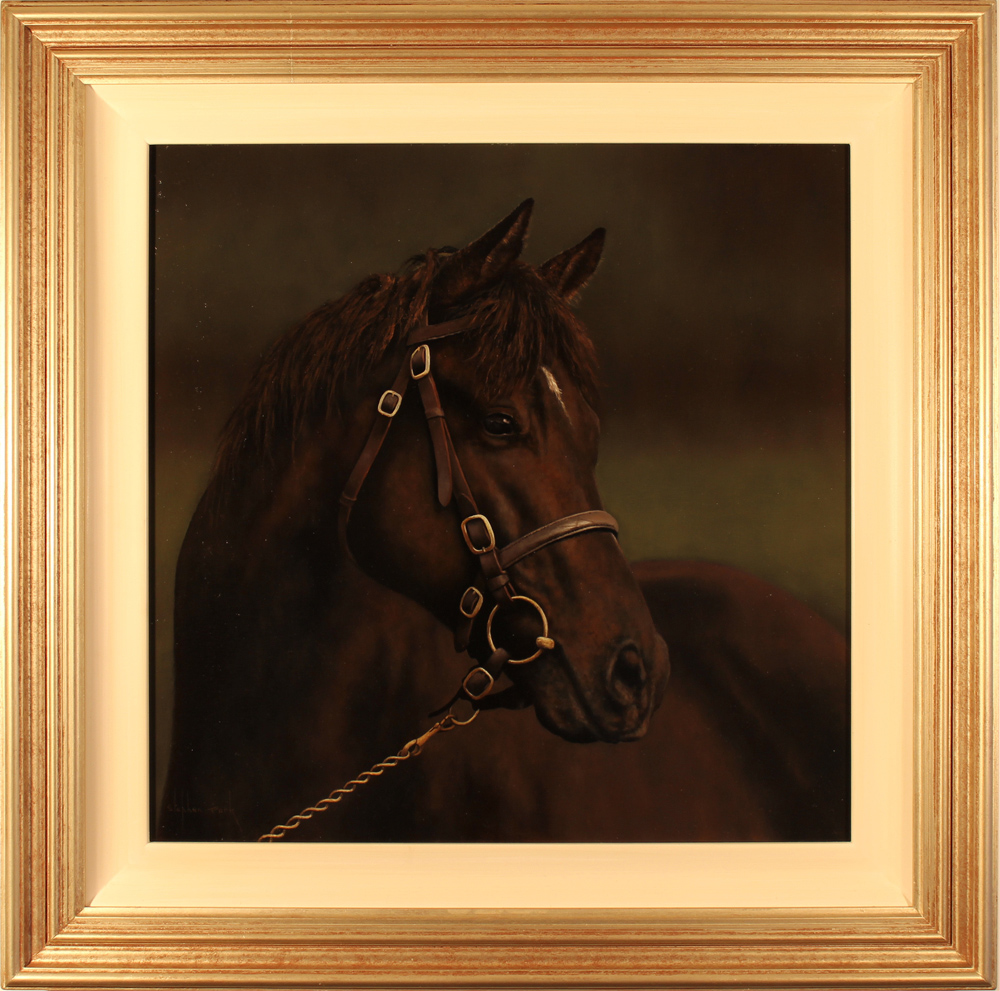 Stephen Park, Original oil painting on panel, Horse Portrait Click to enlarge