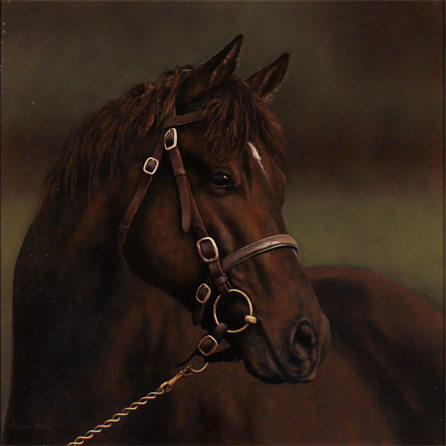 Stephen Park, Original oil painting on panel, Horse Portrait No frame image. Click to enlarge