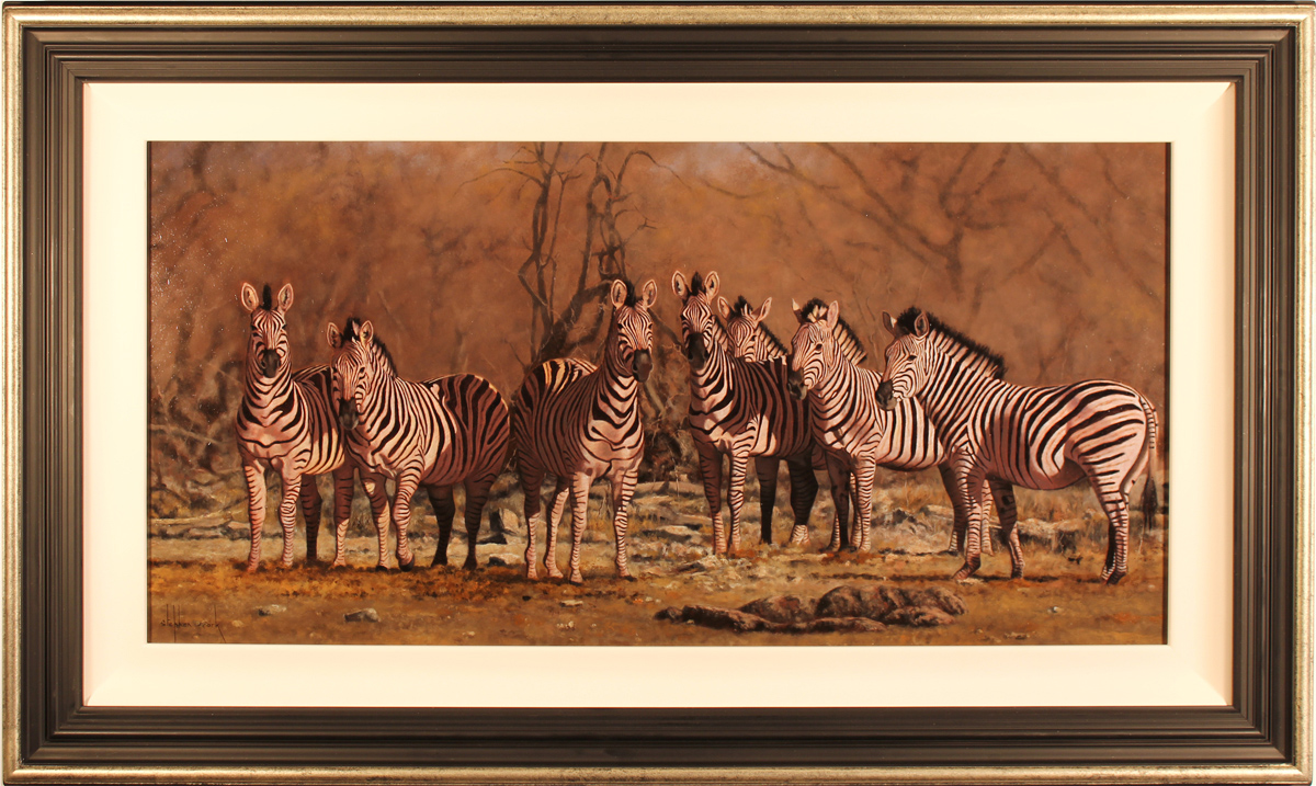 Stephen Park, Original oil painting on panel, Serengeti Zebras Click to enlarge