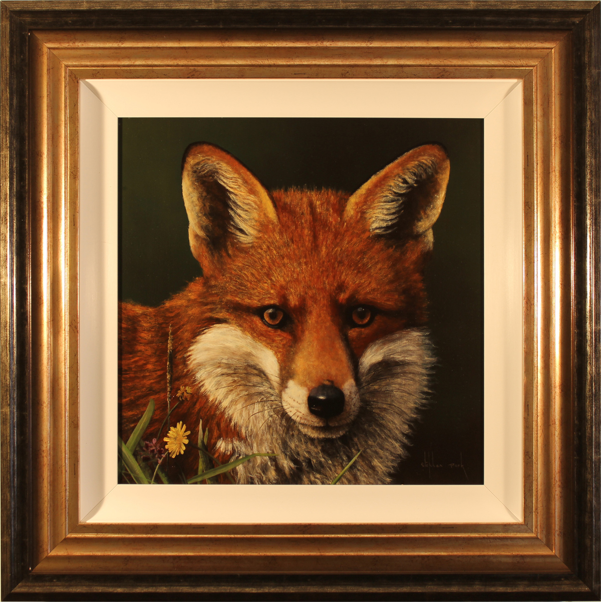 Stephen Park, Original oil painting on panel, Fox Click to enlarge