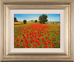 Steve Thoms, Original oil painting on panel, Poppy Fields, Yorkshire Wolds