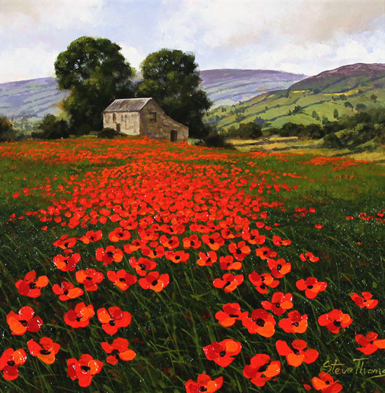 Steve Thoms, Original oil painting on panel, Yorkshire Poppies No frame image. Click to enlarge