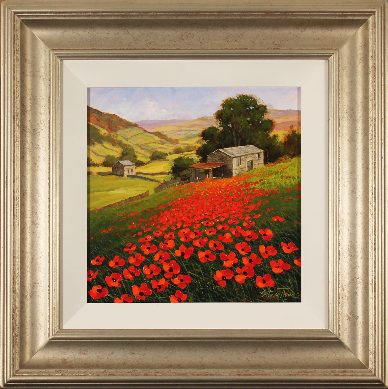 Steve Thoms, Original oil painting on panel, Yorkshire Poppies Click to enlarge