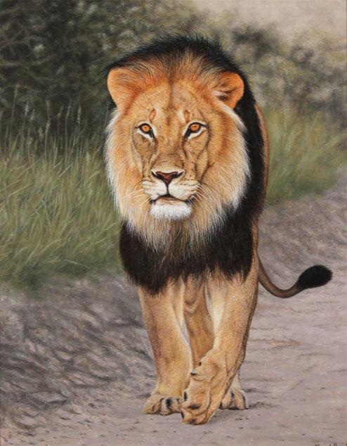 Stuart Herod, Original oil painting on panel, Lion No frame image. Click to enlarge
