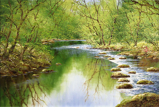 Terry Evans, Original oil painting on canvas, Midsummer Wood