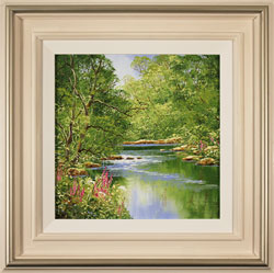 Terry Evans, Original oil painting on canvas, Woodland Stream