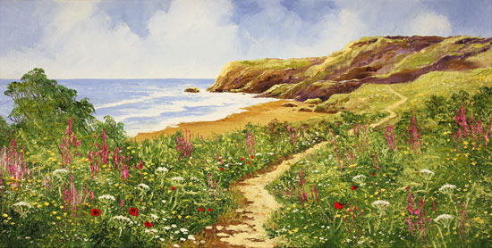 Terry Evans, Original oil painting on canvas, Coastal Walk No frame image. Click to enlarge