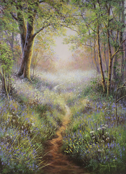 Terry Grundy, Original oil painting on panel, The Bluebell Wood