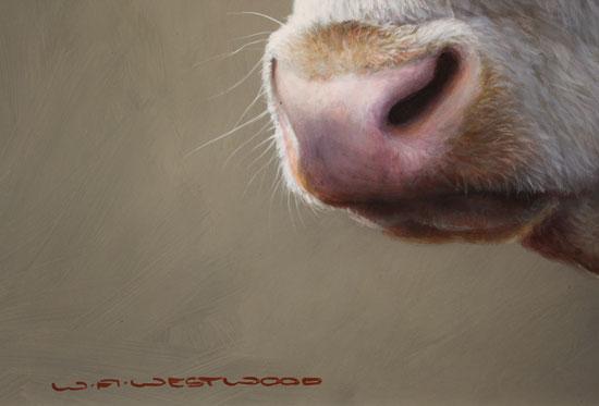 Wayne Westwood, Original oil painting on panel, Hereford Bull Signature image. Click to enlarge