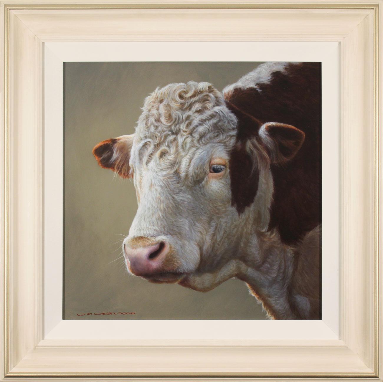 Wayne Westwood, Original oil painting on panel, Hereford Bull Click to enlarge