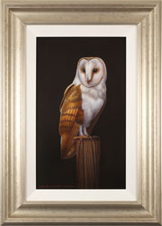 Wayne Westwood, Original oil painting on panel, Barn Owl