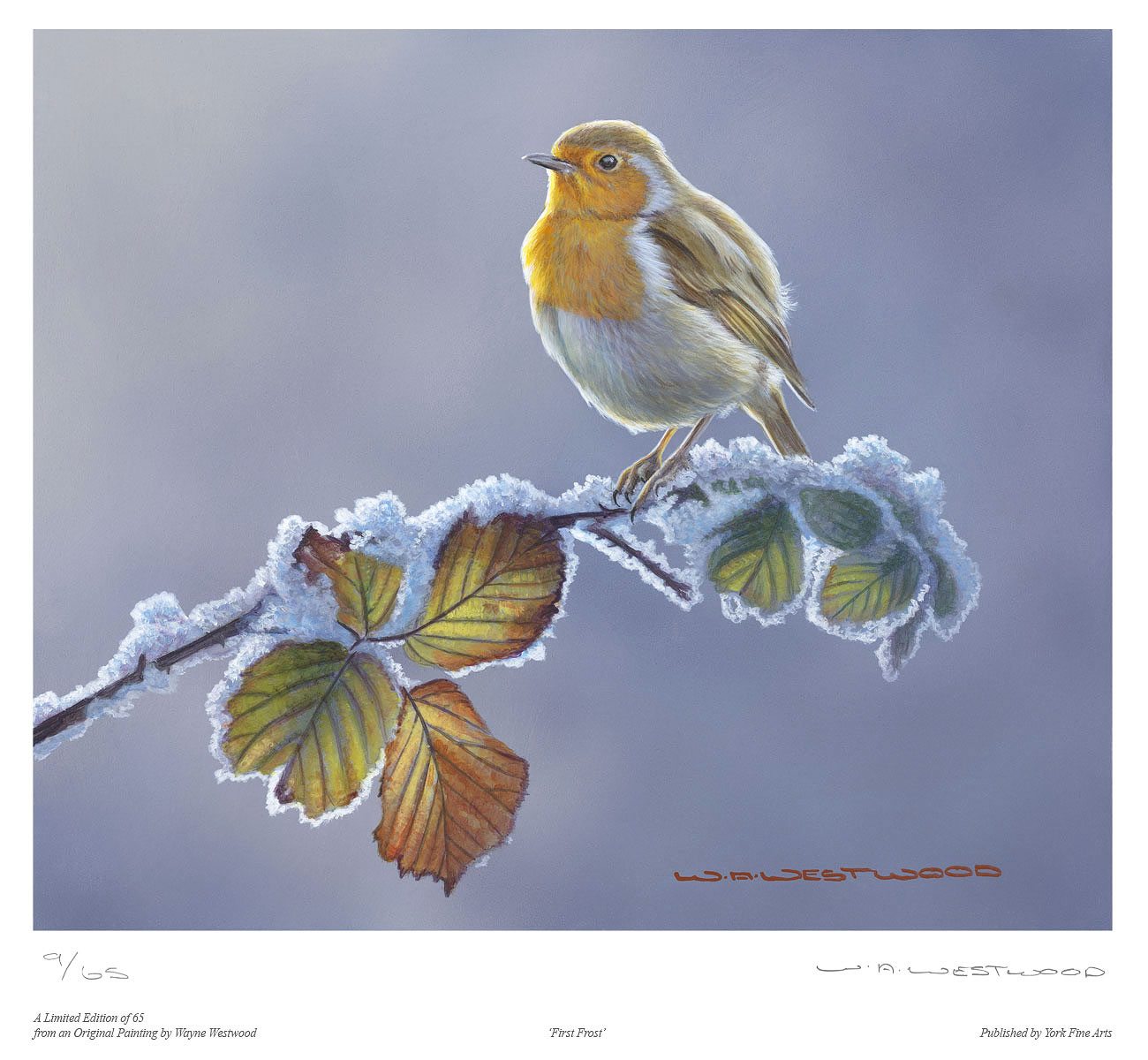Wayne Westwood, Signed limited edition print, First Frost Click to enlarge