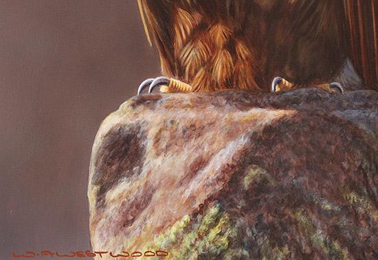 Wayne Westwood, Original oil painting on panel, American Bald Eagle  Signature image. Click to enlarge