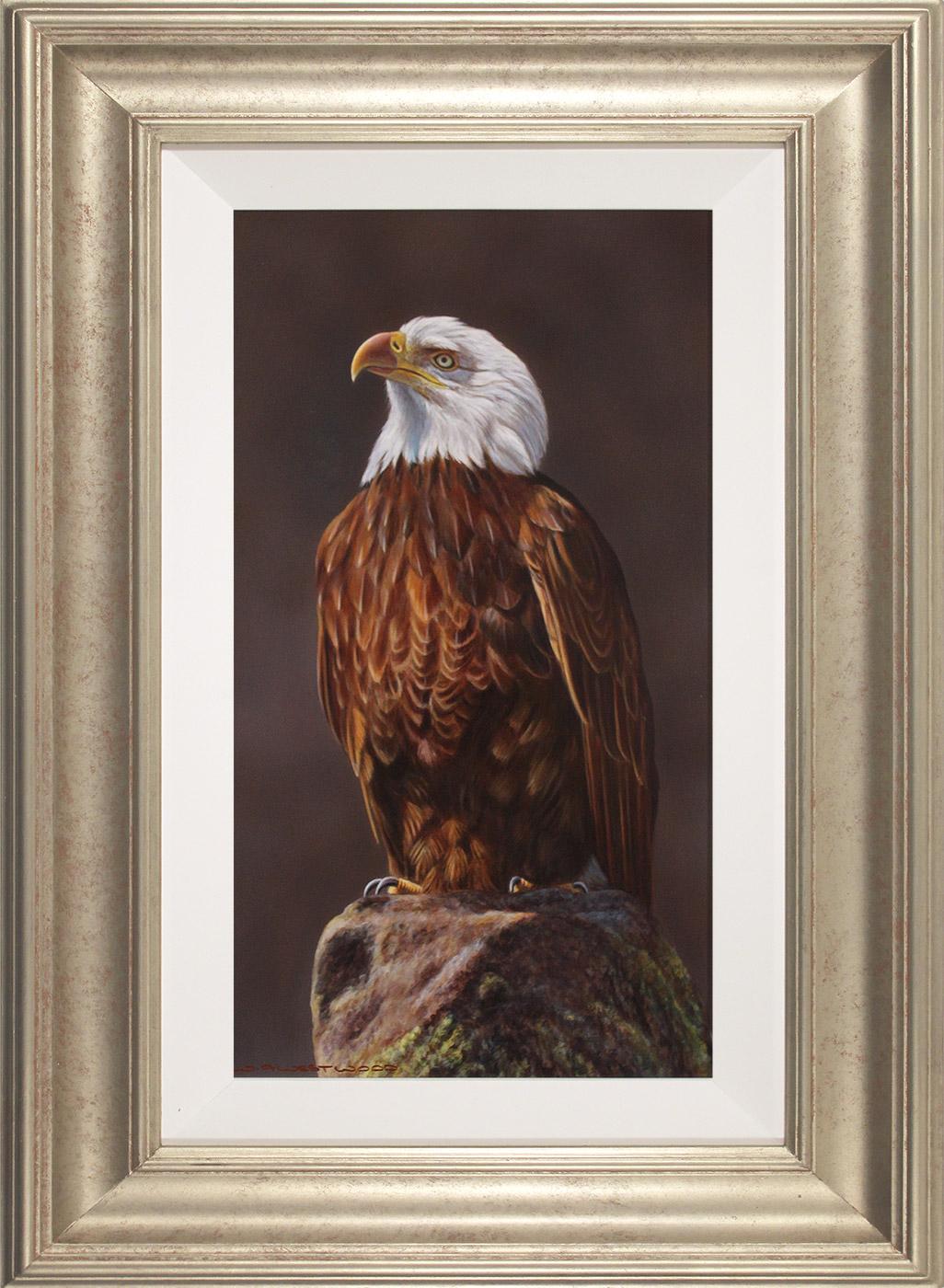 Wayne Westwood, Original oil painting on panel, American Bald Eagle  Click to enlarge